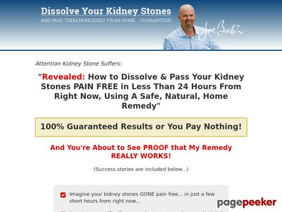 The Kidney Stone Remedy