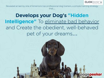 Brain Training For Dogs – Adrienne Farricelli's Online Dog Trainer