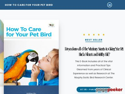 How to Care for Your Pet Bird - Dr. Joel Murphy