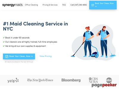 Synergy Maids Website