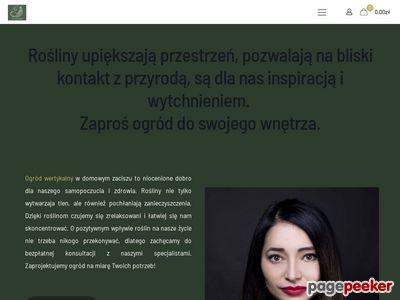 Ściana z mchu - Juko