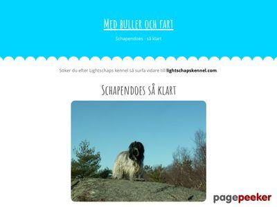 Schapendoes,  uppf�dning i hemmilj� - http://lightschaps.se
