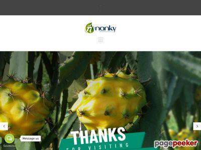 nankyfoods.com