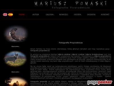 Fotografia Przyrodnicza - Mariusz Pomaski