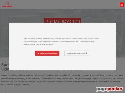 Lew Moto - naprawa pomp wtryskowych