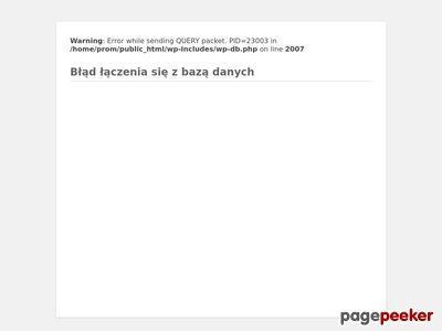 Promajster - Malowanie i mycie elewacji, usługi remontowe Olsztyn