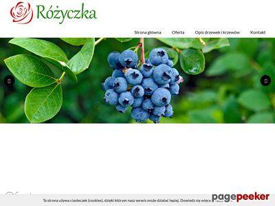 www.szkolka-rozyczka.pl gospodarstwo szkółkarskie