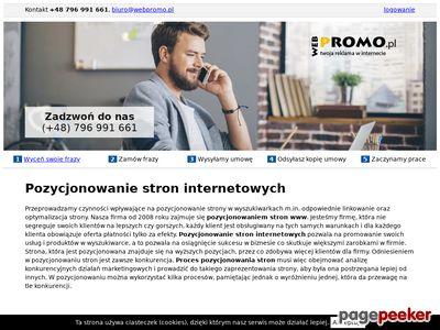 Pozycjonowanie w Google webpromo.pl
