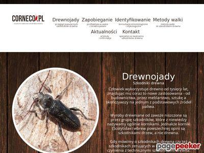 Impregnacja owadobójcza