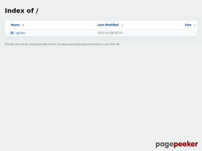 Christine Clayfield Drop Shipping and eCommerce eBook 1