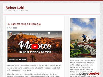 Nabil El Alaoui Sossey - fly like a butterfly,  sting like a bee. - http://www.farbrornabil.se