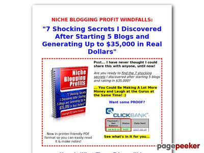 Niche Blogging Profits I Blog for Money (Faster) www