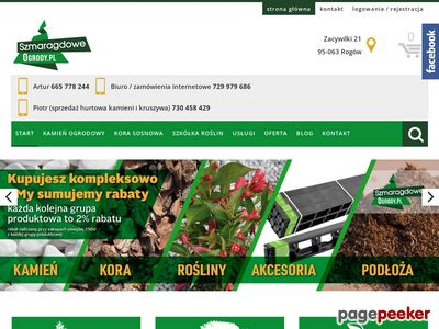 Sprzedaż roślin ozdobnych Łódź