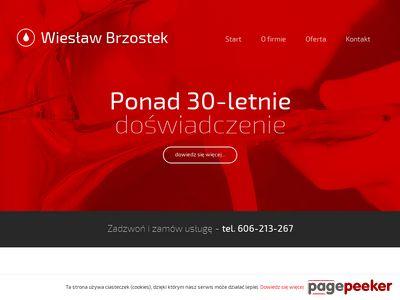 Usługi hydrauliczne - Wiesław Brzostek
