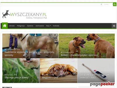 Wyszczekany.pl - serwis Twojego psa