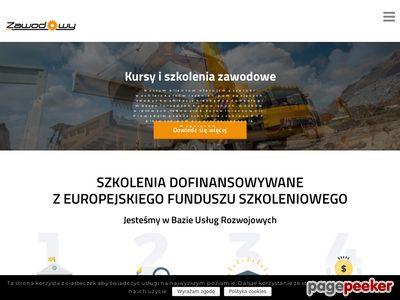 Zawodowy.eu - Kurs na wózki widłowe
