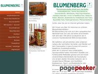 Blumenberg-gmbh.de - Blumenberg GmbH: Holzbadewannen, Saunazubehoer - Home