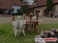 Macrobiosbar.pl - catering zdrowej żywności.
