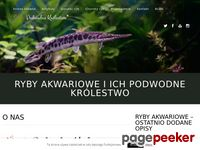 Ryby akwariowe i ich podwodny świat