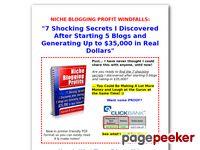 Niche Blogging Profits I Blog for Money (Faster)