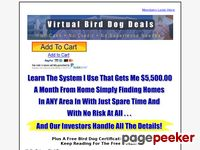 Virtual Bird Dogs