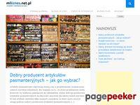 Mbiznes.net.pl