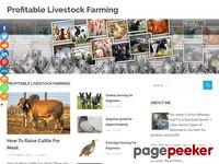 Livestock Farm, Raising Cattle, Cattle Breed, Raising Cows