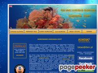 Hurghada - kurs nurkowania