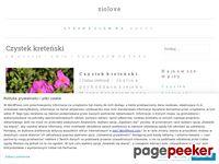 Ziolove.wordpress.com - Blog o tematyce zielarskiej
