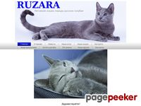 Russian blue cats kennel