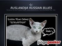 Cattery of russian blue cats Ruslandija - all about the breed, helpful articles, photos, kittens for sale.