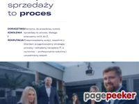 Sellwise.pl - Konsulting, Szkolenia i Doradztwo