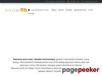 Strony www Słupsk flash