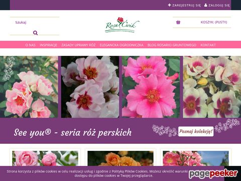 Rosacwik-sklep.pl róże