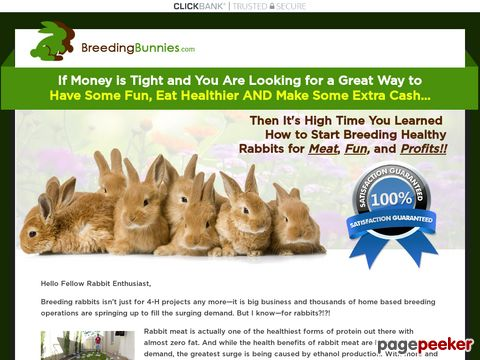 Breedingbunnies.com