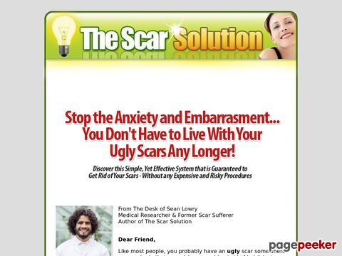 Thescarsolution.com