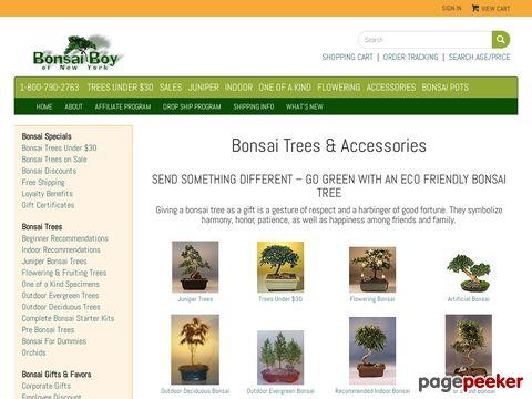 Bonsai Boy Coupon Codes