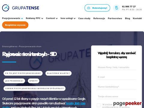 Pozycjonowanie – oferta Agencji Marketingowej z Poznania