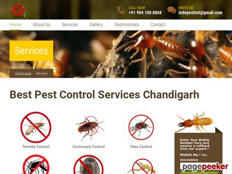 Screeshot of Anti Termite Treatment Parwanoo