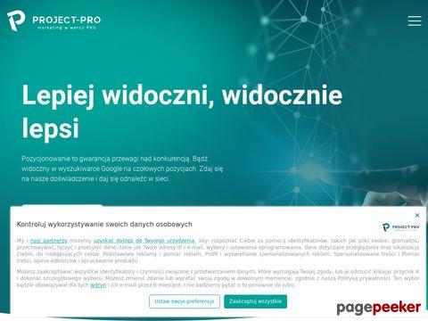 Project-Pro - projektowanie stron WWW,  wizytówki - Rzeszów