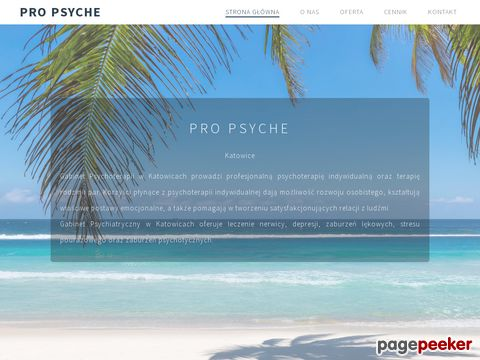 propsyche.katowice.pl- gabinet psychoterapii katowice