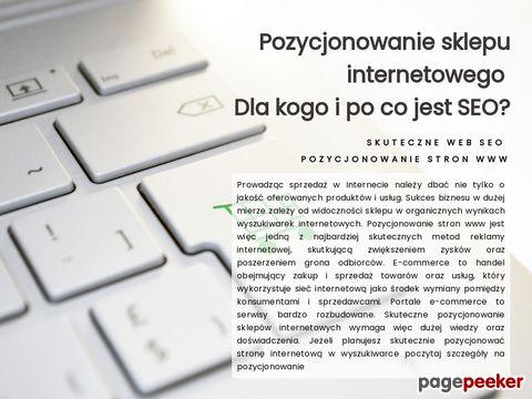 Skutecznyweb.pl - szablony allegro, strony www
