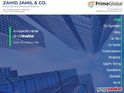 Screeshot of Chartered accountant firms in Pakistan