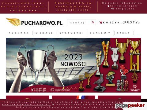 Tanie Puchary Warszawa, Trofea Sportowe, Medale - Pucharowo.PL